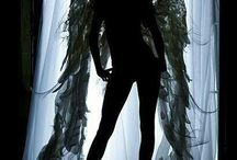 angels - wings
