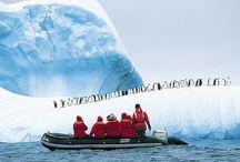 Antarctica / by Jan From-Dirksen