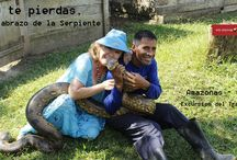 Descubre el Amazonas y su naturaleza exótica / Vacaciones en el Amazonas colombiano. Photos of visiting the Amazon basin, the triple border: Peru, Colombia and Brazil.