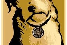 SHELTER DOGS NEED US / Natural Dogtails - Great for your dog's fur, mentality, and our Earth. Visit us at DogtailsShop.com