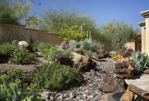 Eco friendly Xeriscape Garden Design Ideas