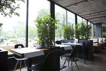 Restauracje Warszawy