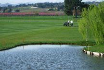 Golf Club Le Cicogne Faenza / Golf Club Le Cicogne Faenza - Faenza (Ravenna)