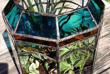 terrarium, tillandsias, bonsaïs.......