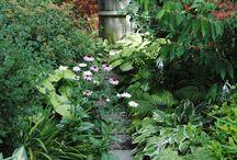 Ogrodnictwo, które mnie zachwyca