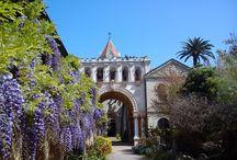 Abbaye de Lérins / Provence - Côte d'Azur