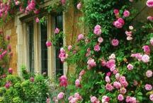jardines deco