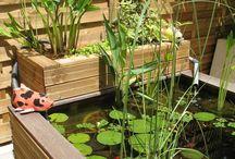 Bassins et patios