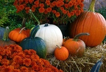Fall Creations / by Debbie Dusenberry