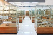 Aula museo de paleontología