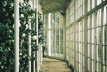 Orangeri  greenhouses