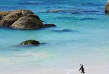 South Africa / Travel