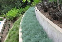 Landscaping steep