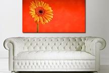 Canvas Art Shop Flowers / Floral canvas prints by The Canvas Art Shop. Affordable flower wall art.