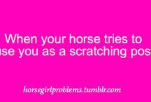 Horse Girl Probs