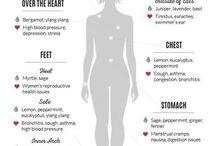 Helse/kropp