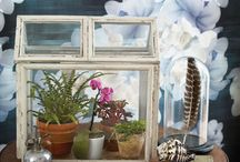 Winter Gardening/Terrariums / You can garden in the winter? Yes, you can! Here is how!