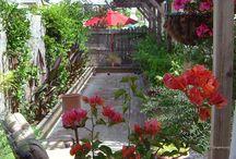 Courtyards / by Misty Sanders