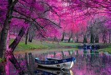 Maravilhas da natureza