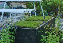 Garden: tuinontwerp/landscaping
