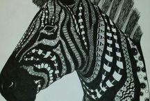grote zebrakop / kleurplaat