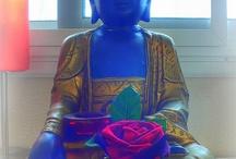 BUDDISHAM