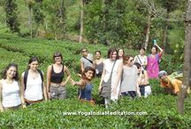 Yoga Holidays / Our Yoga Holidays  will lead you through joyful moments to dissolve into the greenery of nature with the power of Yoga and Meditation .  Kerala is an ideal place for those who looking for Yoga practice and spiritual development in India. Kerala is enriched with its beauty of culture, arts and nature such as long seacoast, rivers, waterfalls and forests. we can experience the spiritual vibrations of India in our each step and breath.