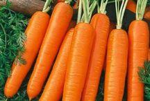 Garden - Vegetables