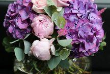 Flower Arrangements / by Vera Shields