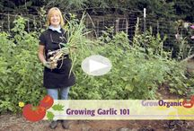 Goeie tuin-instructievideo's
