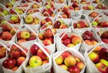 Apple Picking / Recipes featuring one of Michigan's best locally grown produce. / by A Healthier Michigan