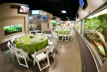 Houston Zoo's Reptile House Venue / Reserve your space today!