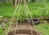 Garden & Home Ideas / Stuff to keep in mind for the house and garden.
