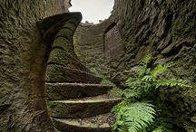 stairs / by Tammy McCutchen
