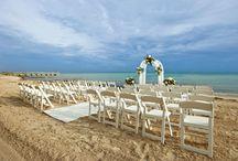 Wedding / by Danielle Flores Fogel