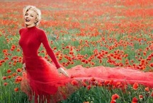 Marilyn>3