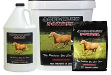 Our Favorite Horse Supplements!