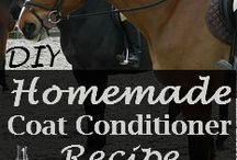 Horse Care DIY