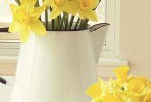 jarní dekorace, kvítí