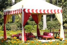 Tents in garden / Namioty w ogrodzie