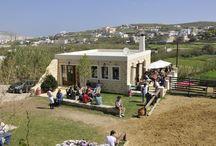Syros Equestrian Club / Ιππικός Όμιλος Σύρου / Syros Equestrian Club - Ιππικός Όμιλος Σύρου