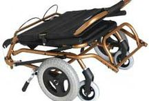 Automobile Disability Products