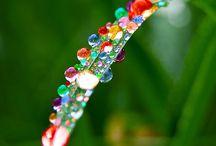 raindrops & colour