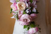 David Austin Roses / David Austin Roses aims to inspire the floral arrangements for your next special event.