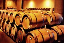 The Winery / www.quintadaromaneira.pt