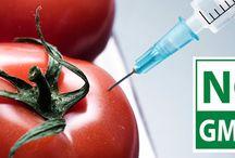 No GMOs / Say no to GMOs