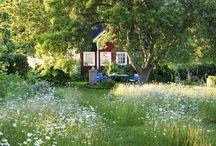möja trädgård