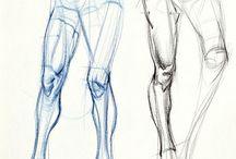 body drawings