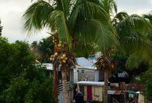 Caye Caulker - Belize / Kiersin Väli-Amerikassa alkuvuodesta 2016 ja Caye Caulkerin valkoisilla hiekkarannoilla viivyin viikon. Tässä albumissa osa kuvista on minun ottamiani