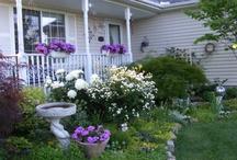 My Country Living Dream Porch / by Deb Allen Schumacher